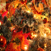 Christmas Tree Closeup 2