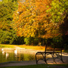 Autumn Pond Jigsaw