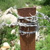 Click here to play Barbed Wire
