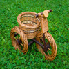 Basket Bike Jigsaw