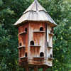 Click here to play Bird House