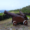 Cannons Jigsaw