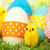 Chicks And Easter Eggs Jigsaw