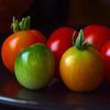 Colorful Tomatoes Jigsaw
