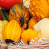 Fall Harvest Jigsaw
