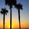 Florida Sunrise Jigsaw