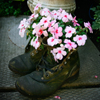 Flower Shoes Jigsaw