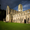 Fountains Abbey Jigsaw
