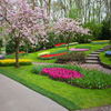 Click here to play Garden In Blossom