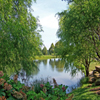 Green Pond Jigsaw