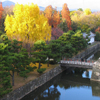 Click here to play Kyoto Nijo Garden