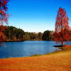 Lake Autumn Jigsaw