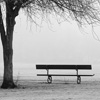 Misty Bench Jigsaw