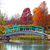 Monet Bridge Jigsaw