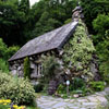 Click here to play Old Cottage