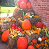 Pumpkin Display Jigsaw