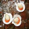Shellfish Jigsaw