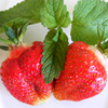 Strawberries Jigsaw