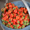 Strawberry Basket Jigsaw
