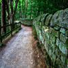 Wall Path Jigsaw