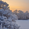 Winter Landscape Jigsaw
