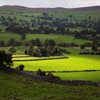 Yorkshire Countryside Jigsaw